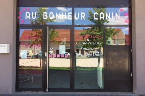 Au Bonheur Canin Jaidemescommercants.fr