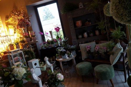 Fleurs Passion Jaidemescommercants.fr