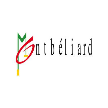 Logo de Ville de Montbéliard