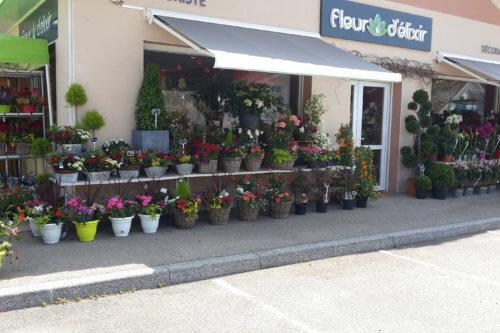 Fleur d'Elixir Jaidemescommercants.fr